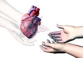 Adevărul despre transplantul de organe (II). Opinii teologice.