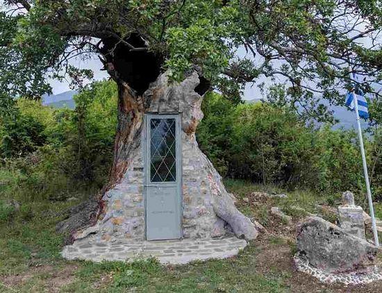 Un sătean grec construiește un paraclis pentru Sfântul Paisie în interiorul unui stejar!